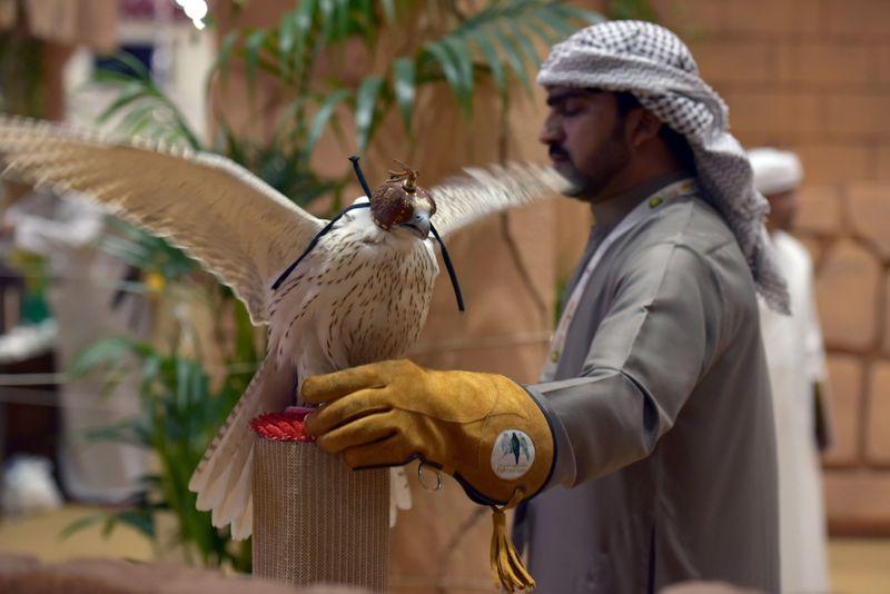 falcon2-1617453320430