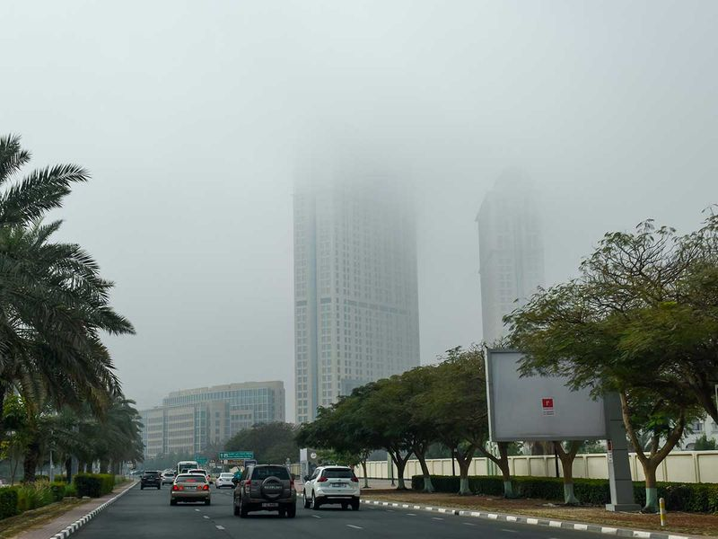20210408 fog morning
