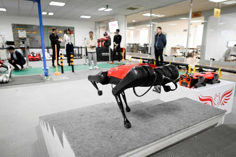 Meet Alphadog: Chinese tech company develops robo-dogs