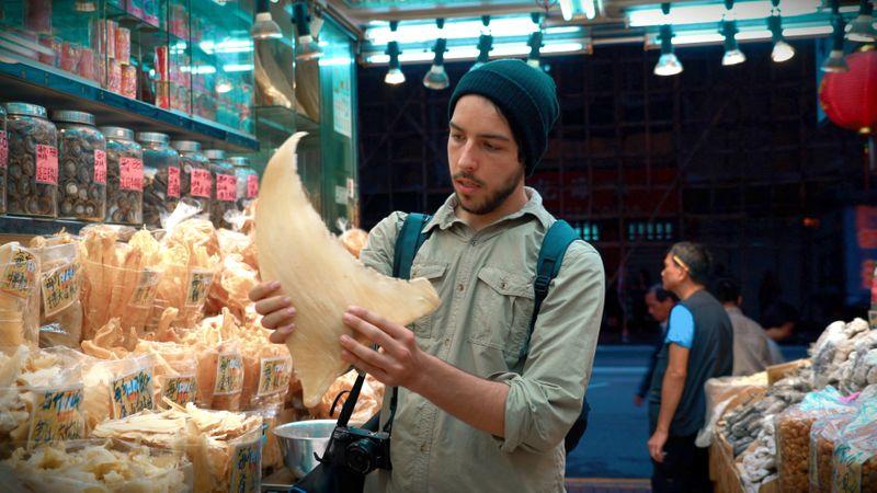 Filmmaker Ali Tabrizi in 'Seaspiricy'