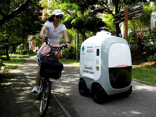 Run out of milk? Robots on call for Singapore home deliveries