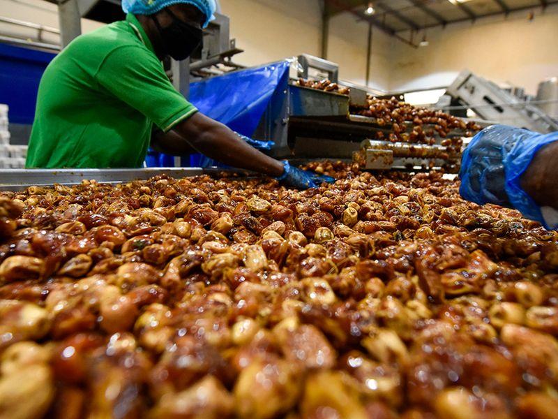 Dubai dates factory