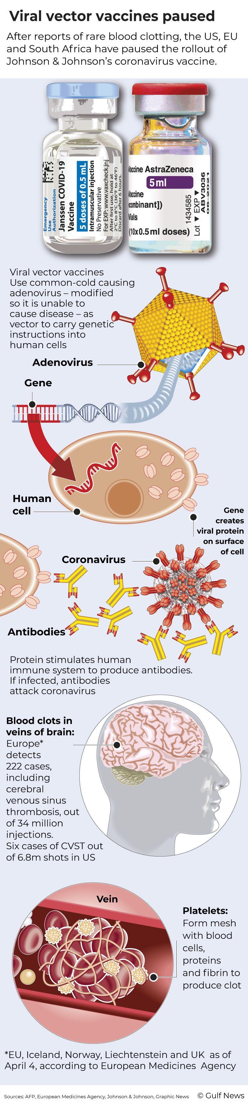 Graphic Vector virus vaccines