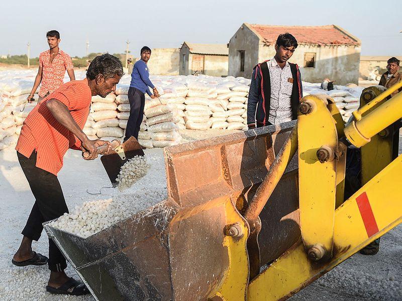 Salt farmers India