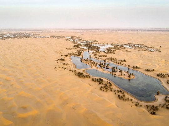 Photos: Al Qudra lake in Dubai, a great escape into the desert
