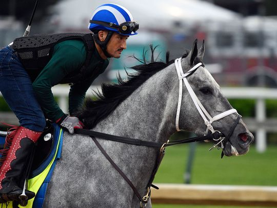 An exercise rider works out Kentucky Derby entry Essential Quality at Churchill Downs