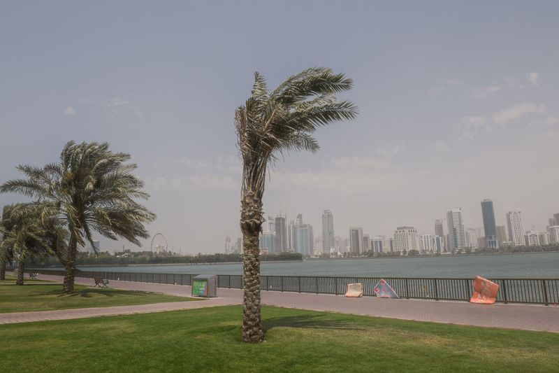 Strong winds, dust storm on Sharjah