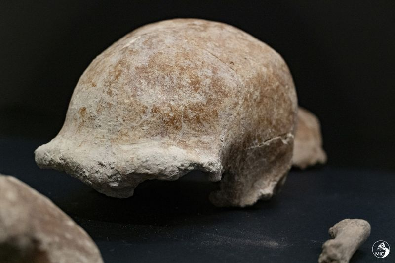 Copy of Italy_Neanderthals_74416.jpg-6d65e-1620556070157
