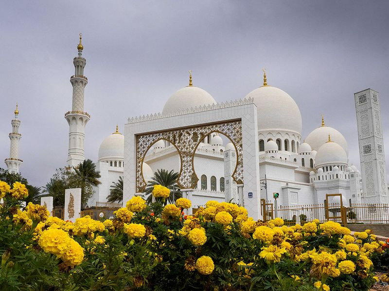 Flowers located in Sheikh Zayed Grand Mosque, Abu Dhabi.