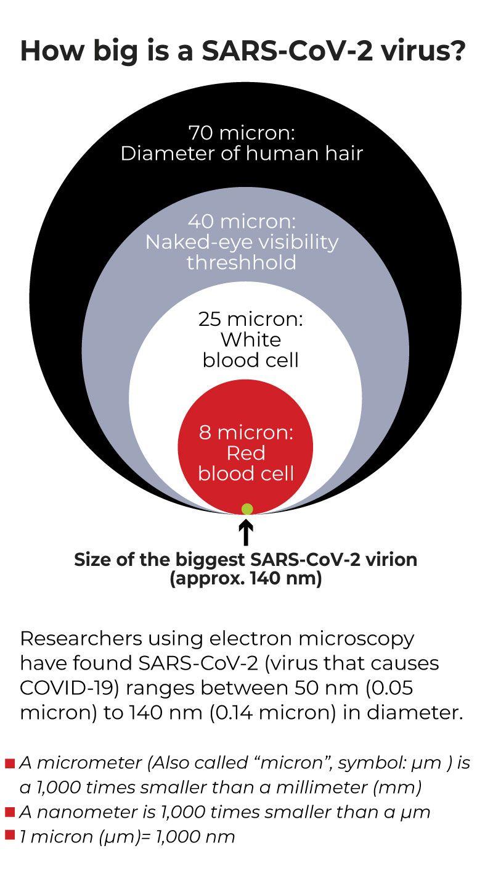 SARS CoV-2 size