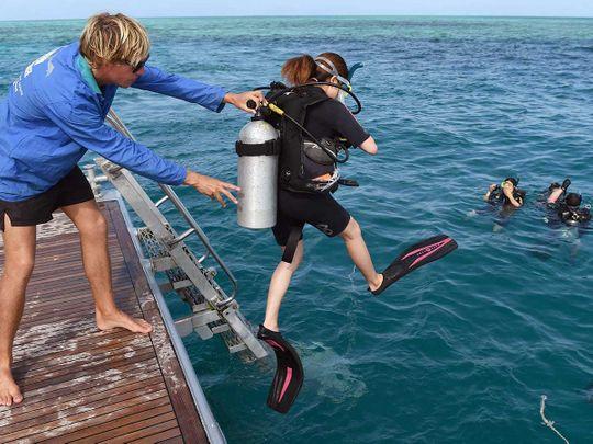 Queensland australia scuba