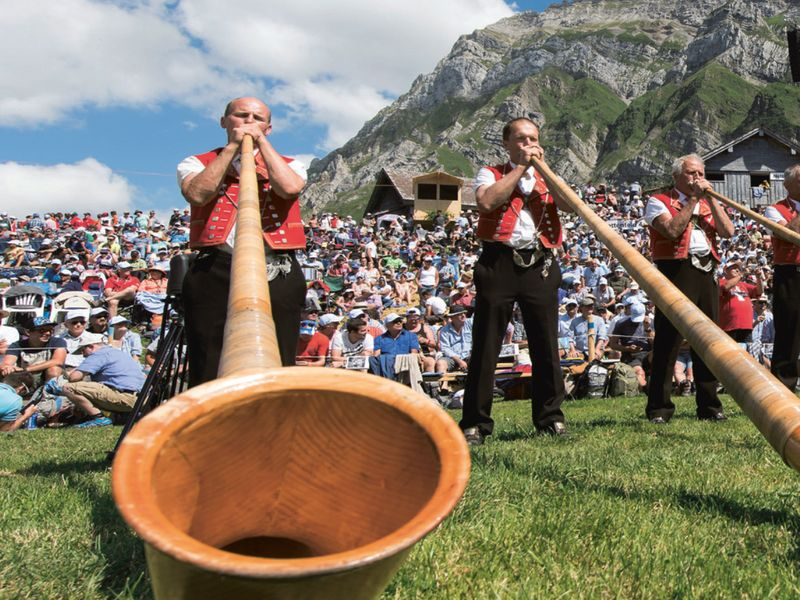 Orchestra of alphorn players