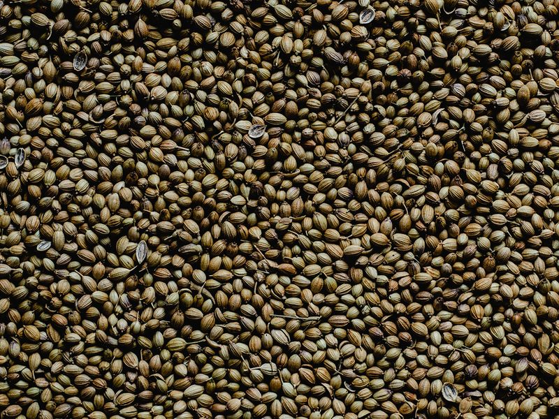 coriander-seeds-pexels