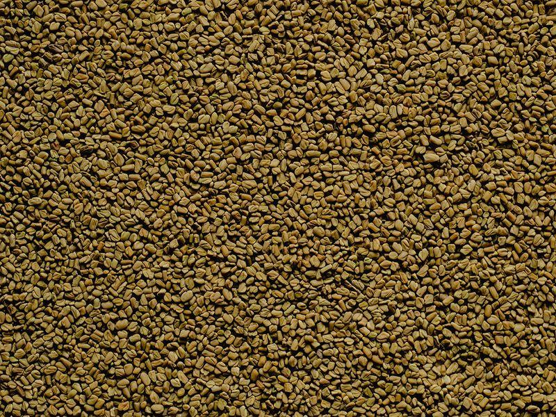 fenugreek-seeds-pexels
