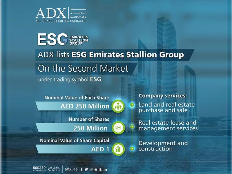 Stock Emirates Stallion