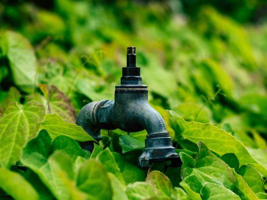 Pakistan water crisis