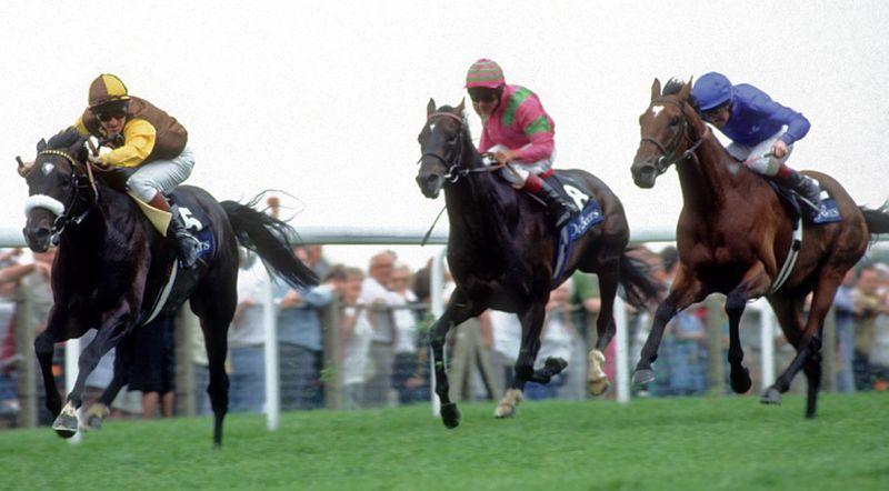 Horseracing - Shaamit