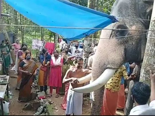 Elephant pays tribute to its mahout at his funeral in Kerala.