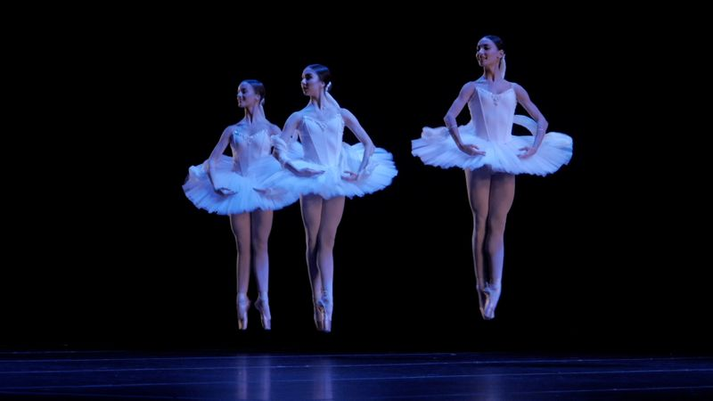 performing arts-1623153736034