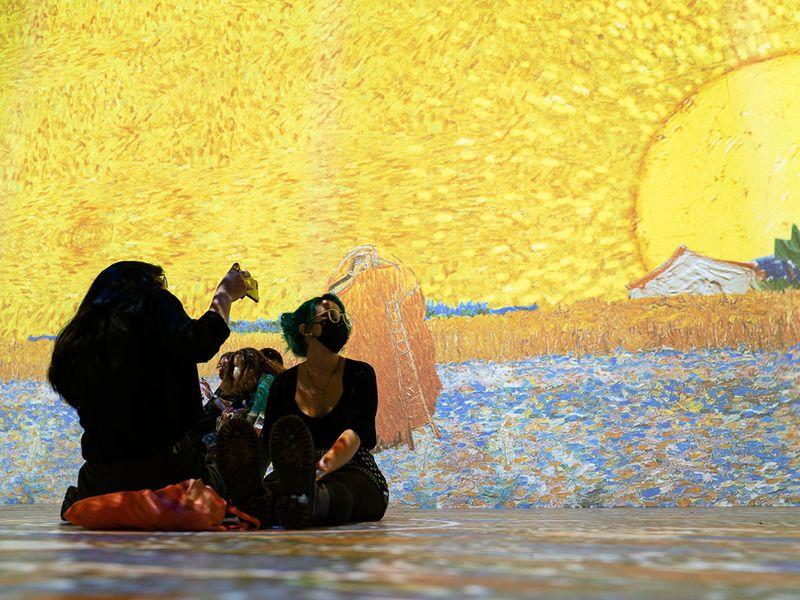Immersive Van Gogh Exhibit gallery