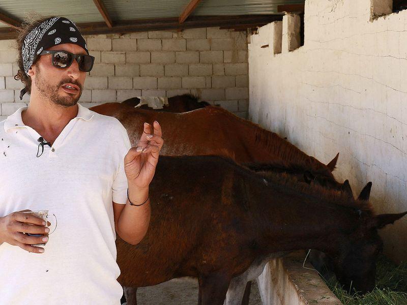 Egyptian vet Hassan Shatta