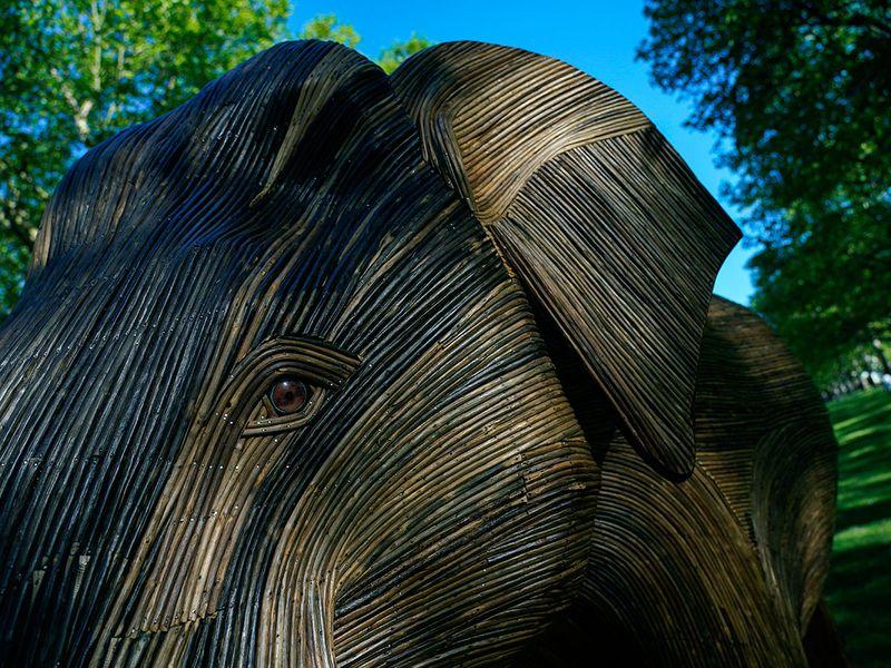 Britain_Elephants_Exhibition_82389