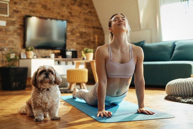 Dog yoga-1624094848766