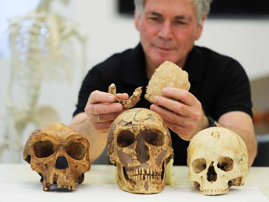 pieces of fossilised bone of a previously unknown kind of early human discovered at the Nesher Ramla site in central Israel.