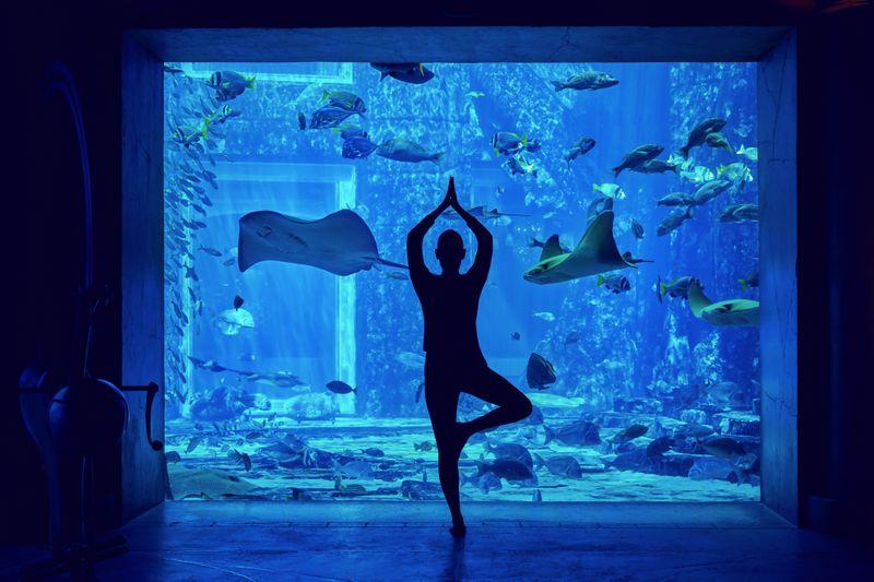 Atlantis the palm yoga