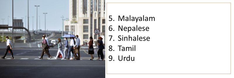 5.Malayalam 6.Nepalese 7.Sinhalese 8.Tamil  9.Urdu