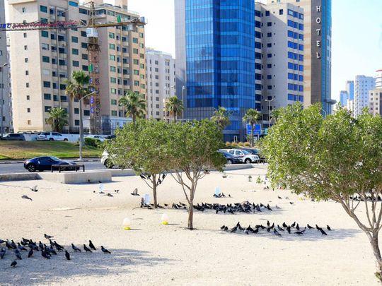 kuwait heat-1-1625400500178