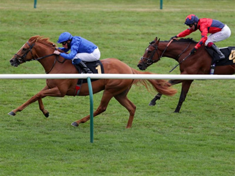 Creative Force wins at Newmarket in 2020.