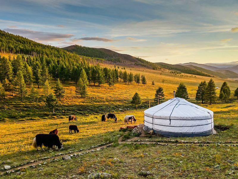 MONGOLIA |