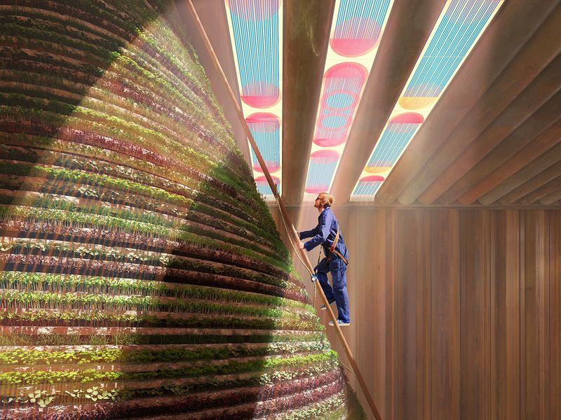 netherlands pavilion expo 2020