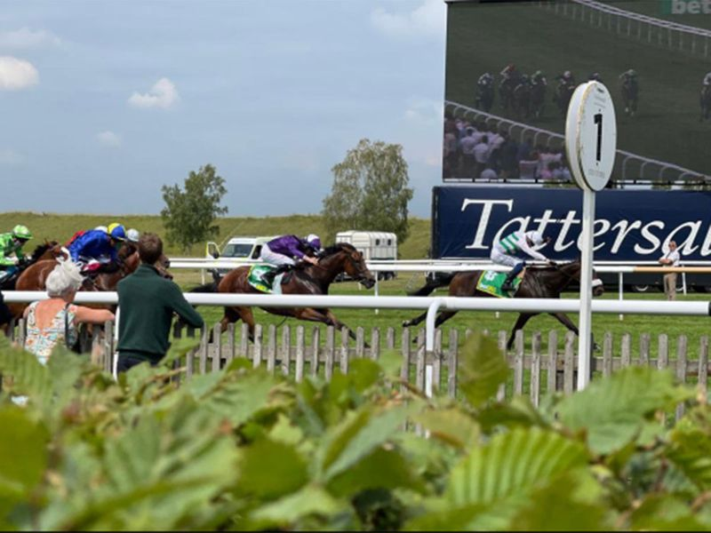 Sandrine, with David Probert at his best, was a willing winner of the Group 2 Cambridge Stakes