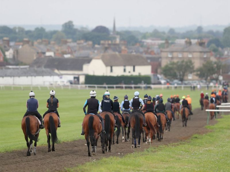 Soon the July Course was busying up on Day 2 with a peloton of horses stretching their legs