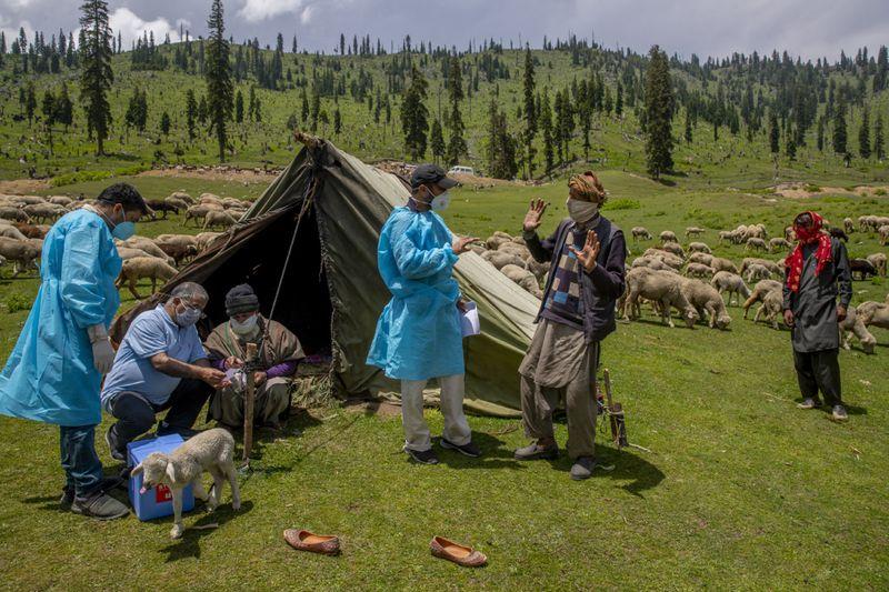 Copy of Virus_Outbreak_Kashmir_Photo_Gallery_49220.jpg-0f3b0-1625919895192