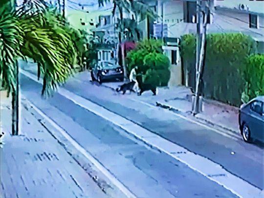 Dog-attack-karachi--1625919573780