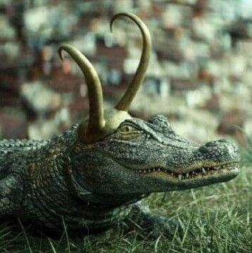 Alligator Loki-1626169741737