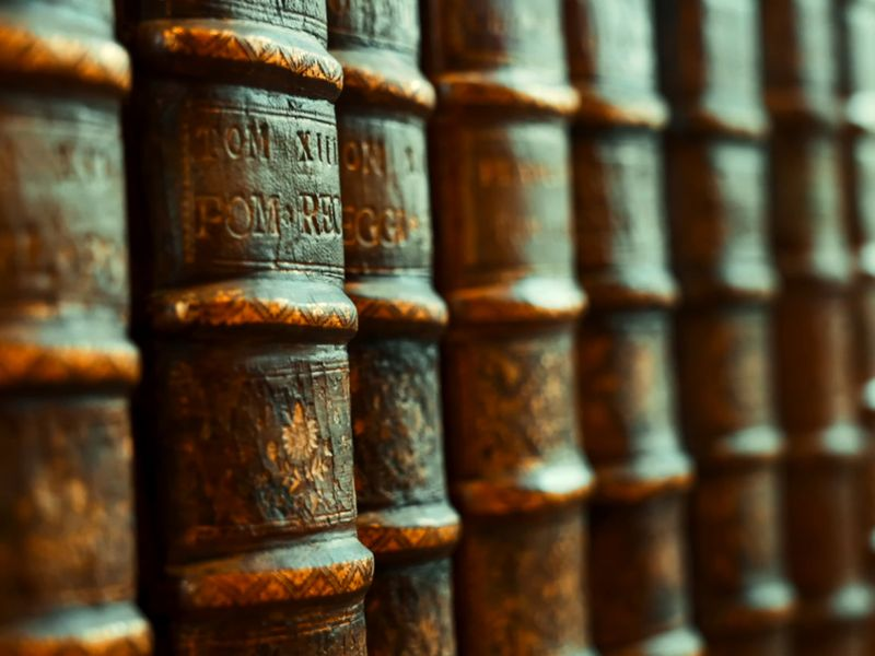 Encyclopédie franch pavilion