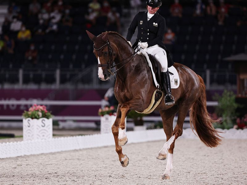 Isabell Werth of Germany and Bella Rose 2 compete in the dressage