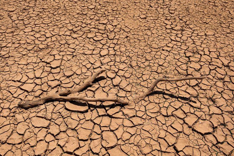 Photos: Severe drought marks California landscape