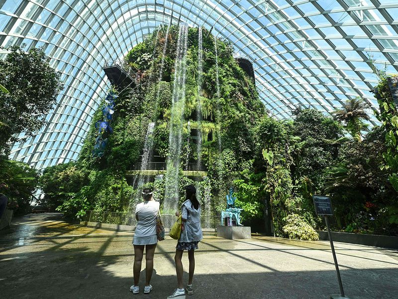 Going green: A tour of world cities putting down roots