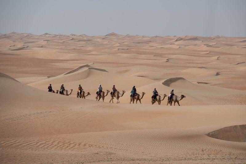 Camel Trek 01-1628257192288