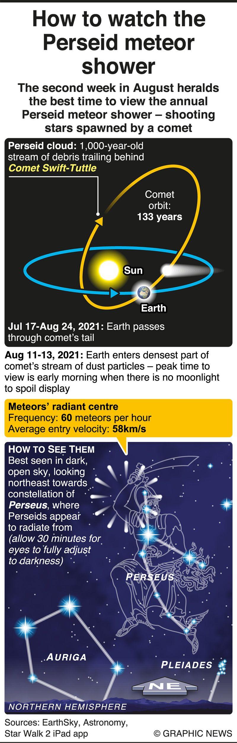 Perseid meteor shower to peak mid-August