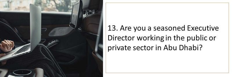 13. Are you a seasoned Executive Director working in the public or private sector in Abu Dhabi?