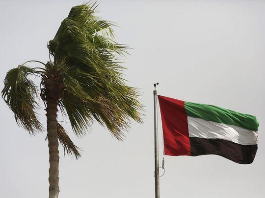 Stock - UAE Flag