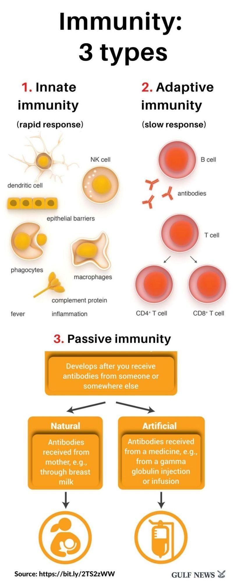 Immunity 3 types