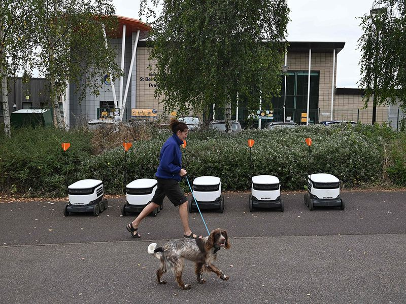 Grocery delivery robots gallery