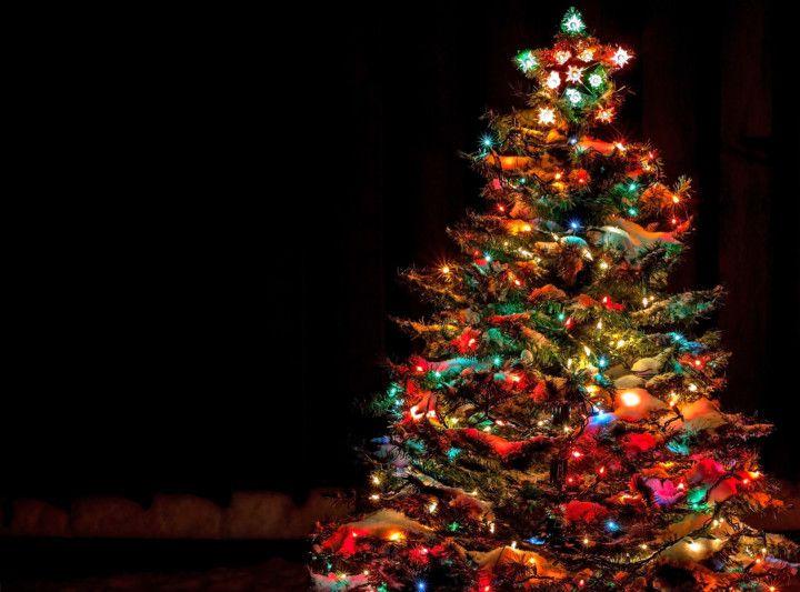 shutterstock_CHRISTMAS 2-1632925712027